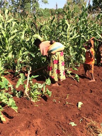 Nuevo proyecto en Burundi (Fase 2)